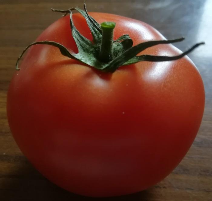 De tomaat die mee op reis ging